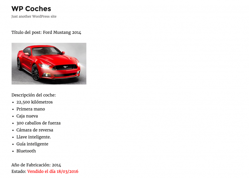 ACF coches frontend