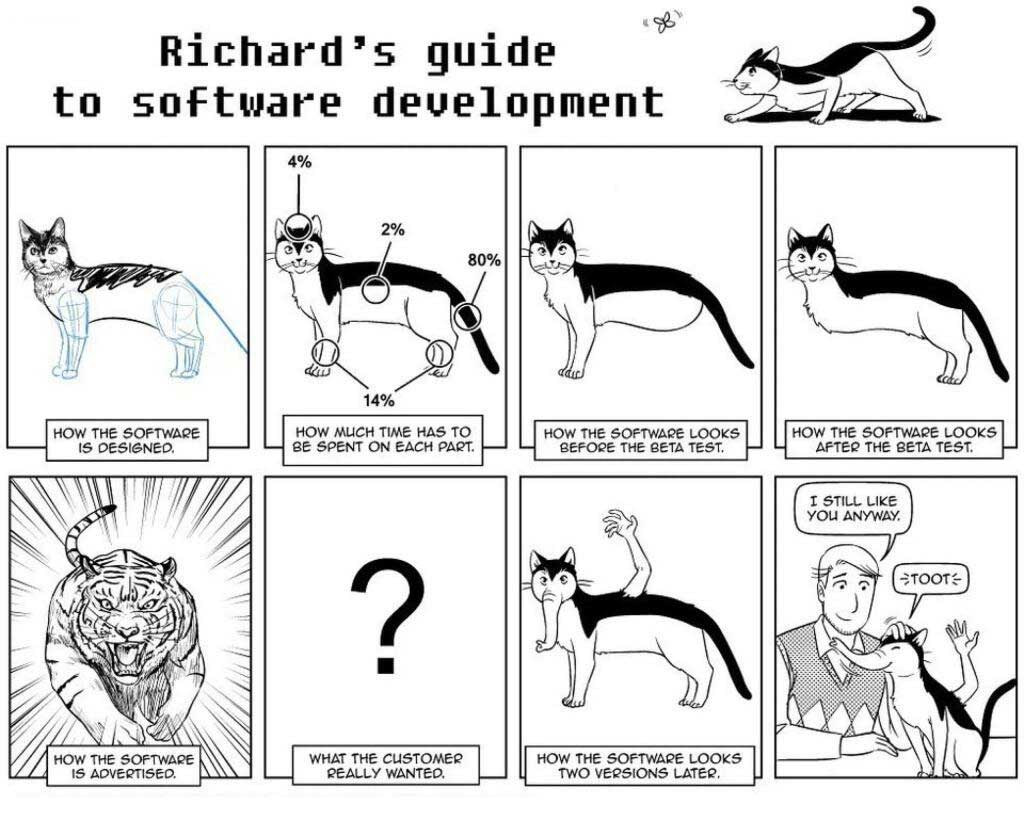 richards guide to software development